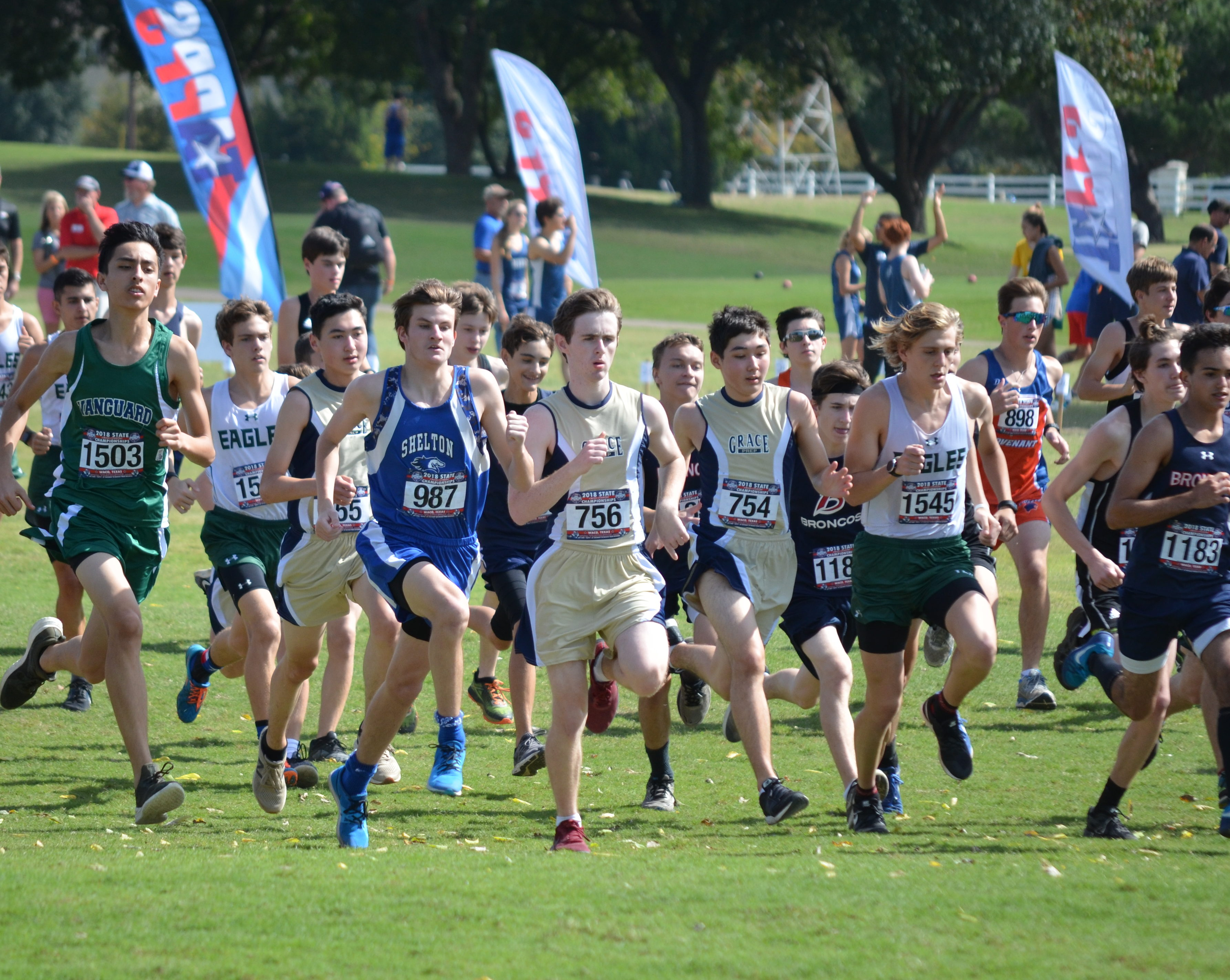 HS Cross Country Finishes 14th at State
